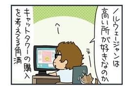 【猫漫画傑作選】猫がキャットタワーを制覇した日