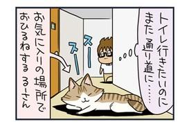 【猫漫画傑作選】猫のへそ天写真館w
