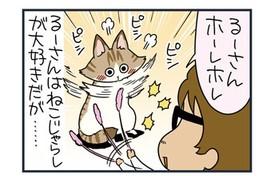 ノルウェージャン、尻を振るだけでジャレないw【猫漫画傑作選】