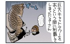 ノルウェージャン、キャットタワーを大きさで制する【猫漫画傑作選】