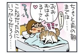 ノルウェージャン、飼い主を爪で起こす【猫漫画傑作選】