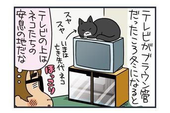 ノルウェージャン、無人の家でテレビをつける【猫漫画傑作選】