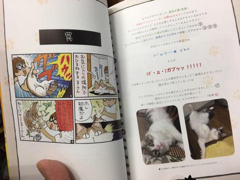 単行本の見本誌到着! 帯コメはハライチ岩井さん~!
