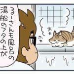 ノルウェージャン、お風呂でくつろぐ【猫漫画傑作選】