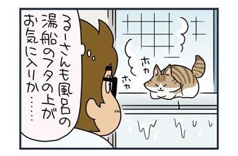 【ねこまんが】お風呂の思い出