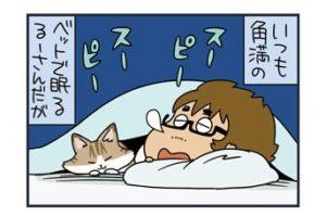 ノルウェージャン、ベッドから落ちるw【猫漫画傑作選】