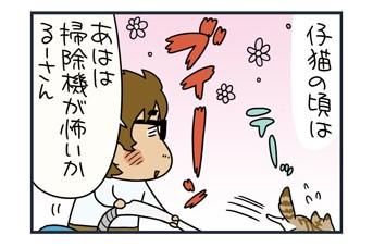 ノルウェージャンとペルシャの掃除機への対応【猫漫画傑作選】